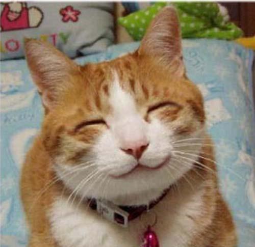 「狙って笑いを生み出すために 必要なたった2つの大切なこと」のアイキャッチ画像
